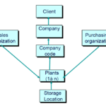 Defining Enterprise Structure in SAP ERP